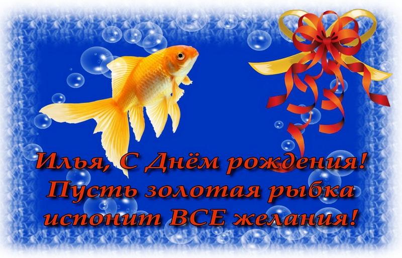 Золотая рыбка открытка на день рождения