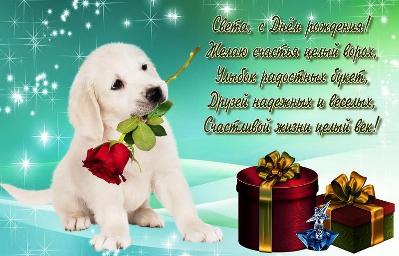 Поздравление с днем рождения собаке стих него
