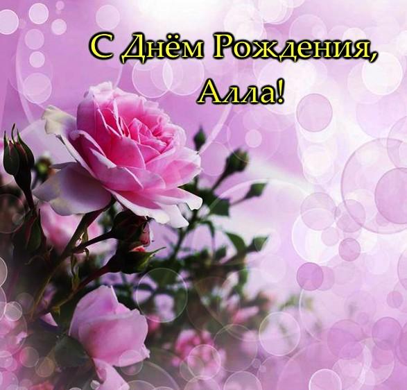 Поздравление с днем рождения аллочке картинка