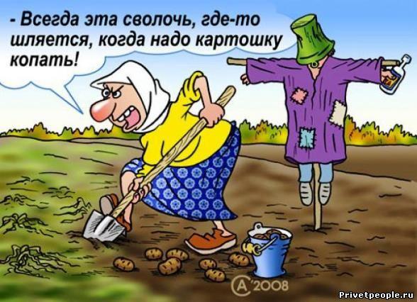 достоевский про бабу и луковицу тест