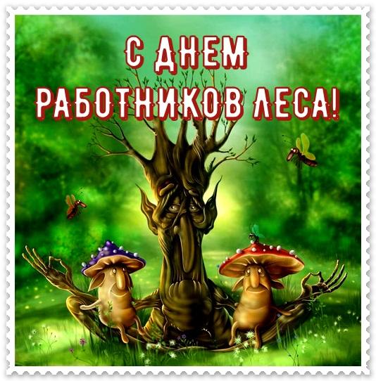 Открытки, открытки работника леса