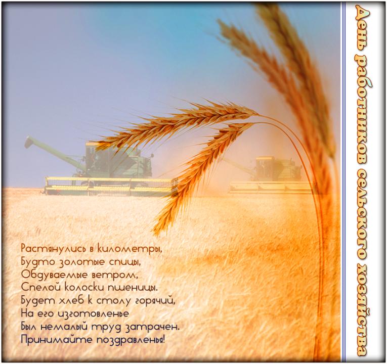 своему открытка ко дню сельского хозяйства своими руками это