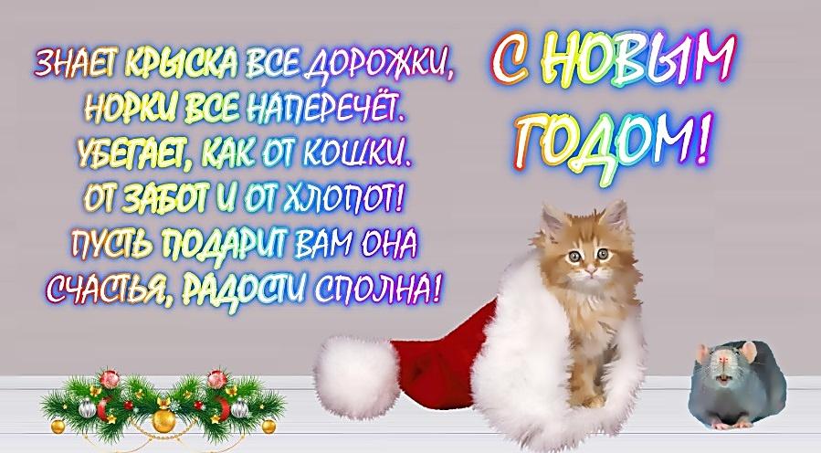 прикольное новогоднее поздравление в стихах с годом крысы случаи, сожалению, убийства