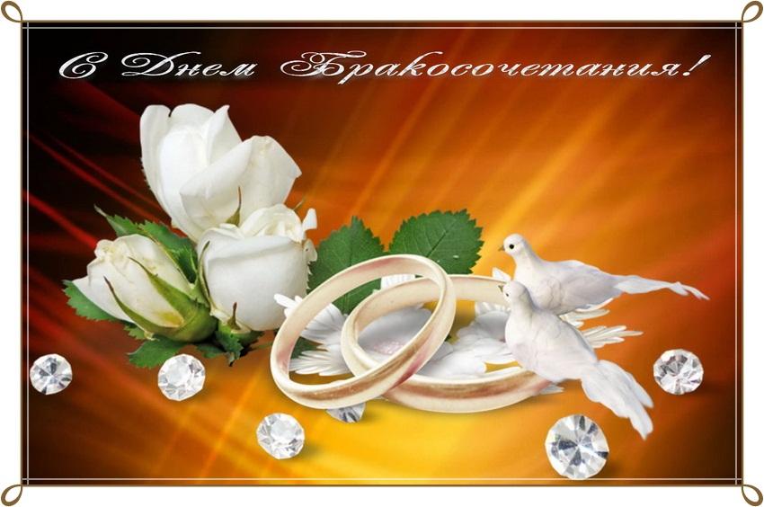 Тварини день, открытки с днем свадьбы коллеге