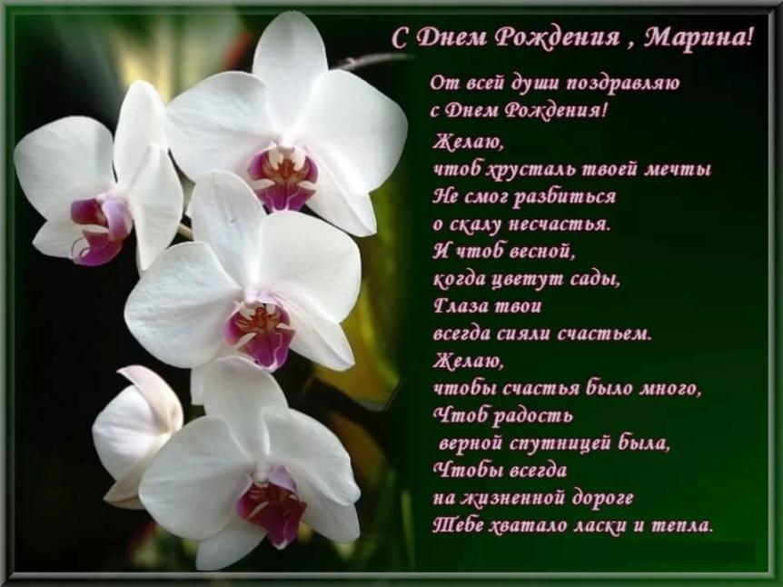Поздравление с днём рождения в стихах марина