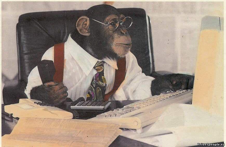 Нами руководят обезьяны