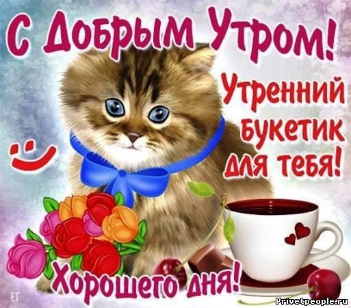 Прикольные поздравления с добрым утром девушке