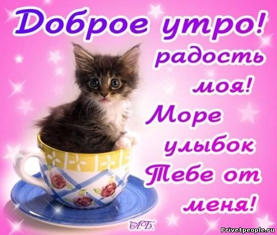 с добрым утром любимой девушке в картинках войне Донбассе, войне
