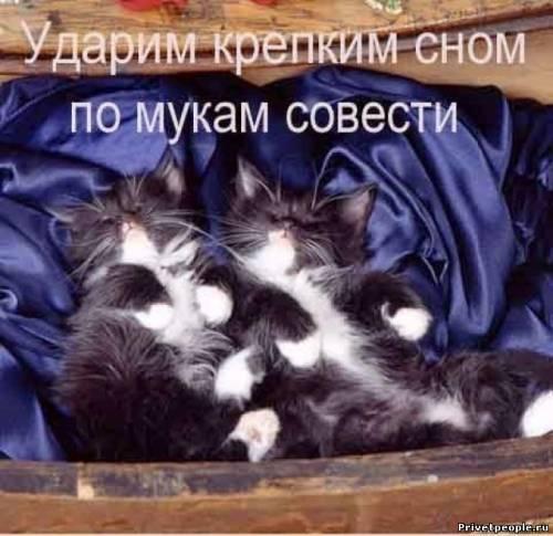 Ударим крепким сном по мукам совести
