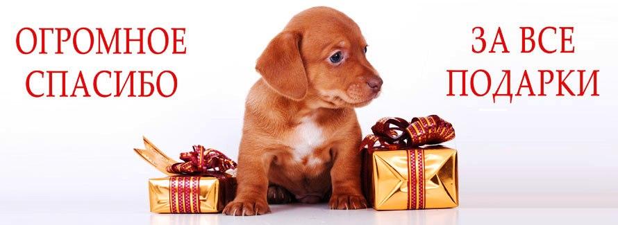 Продуктами, открытка спасибо всем за подарки