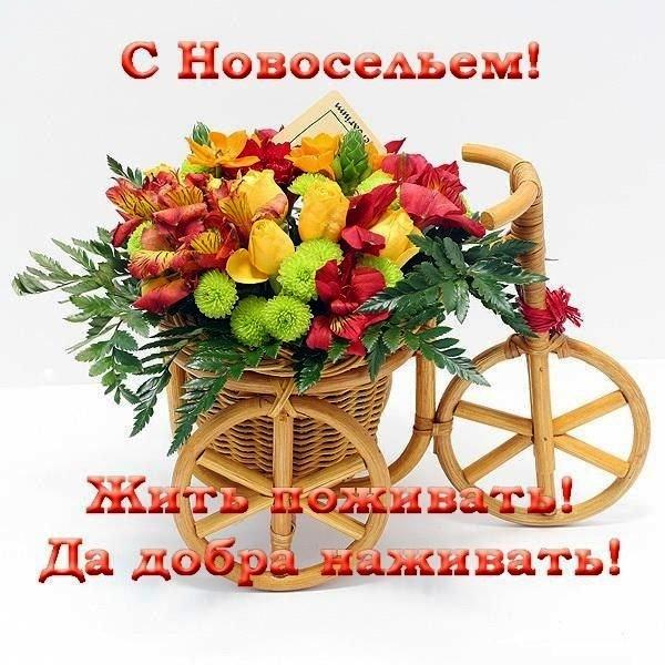 https://privetpeople.ru/_pu/2/67044302.jpg