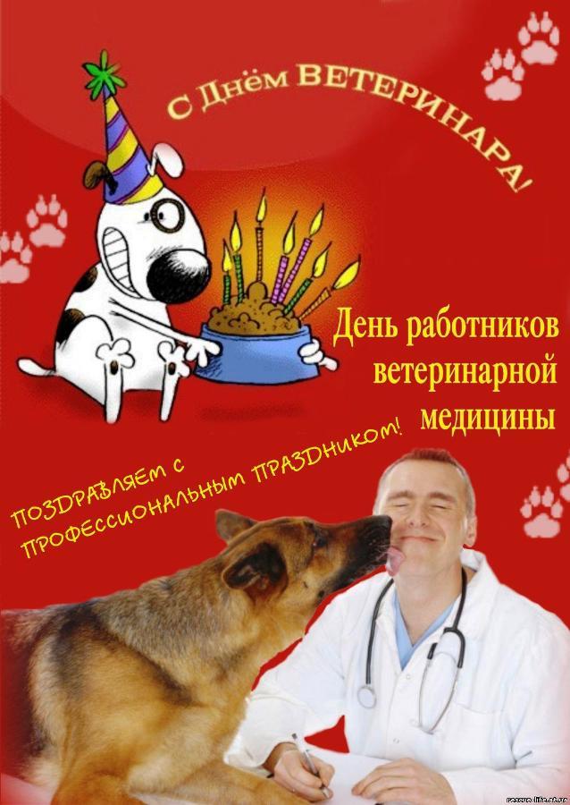 Поздравление с днем ветеринарного работника в картинках 5