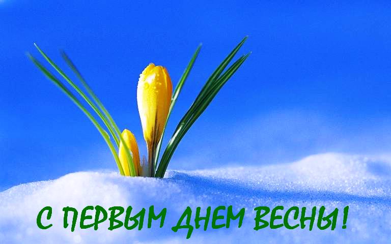 Открытки, прикольные картинки поздравлялки с началом весны