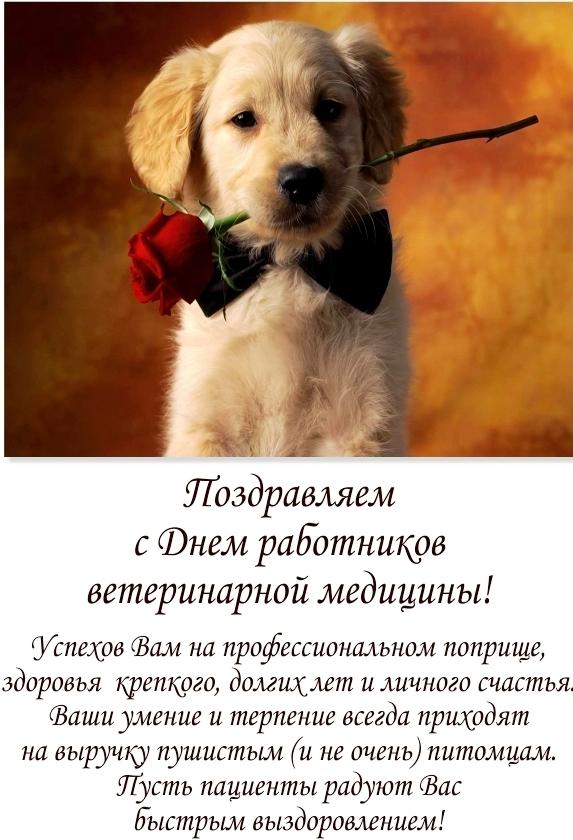 поняли, короткие поздравления ветеринару прикольные как