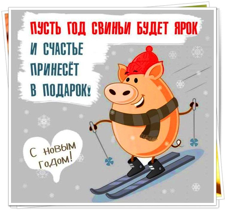 Юмористические картинки к новому году свиньи