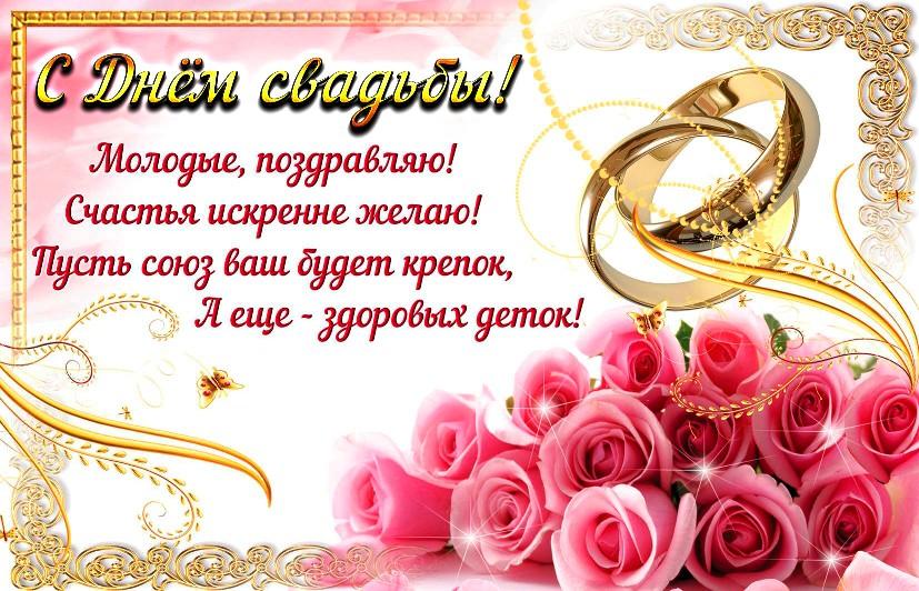 Поздравления молодоженам на свадьбу картинки прикольные