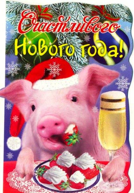 статусы поздравления с новым годом свиньи только красивые растения