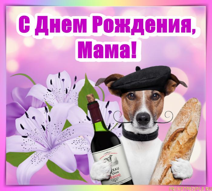 Поздравление с днем рождения мамы прикольные