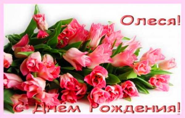 Поздравления с Днем рождения Олесе в стихах