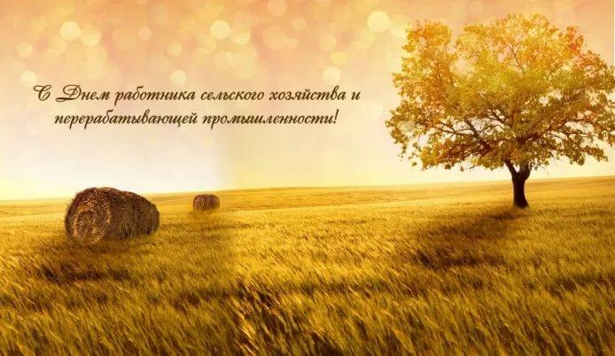 С днем работников сельского хозяйства поздравления в прозе 7