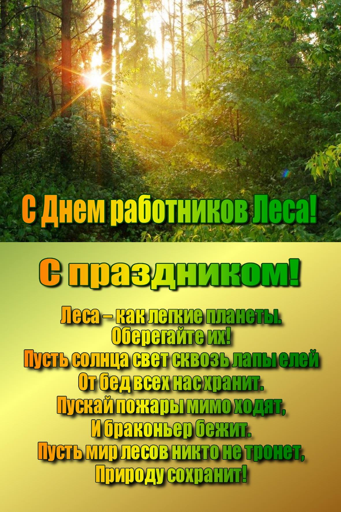Поздравления с днём работника леса прикольные