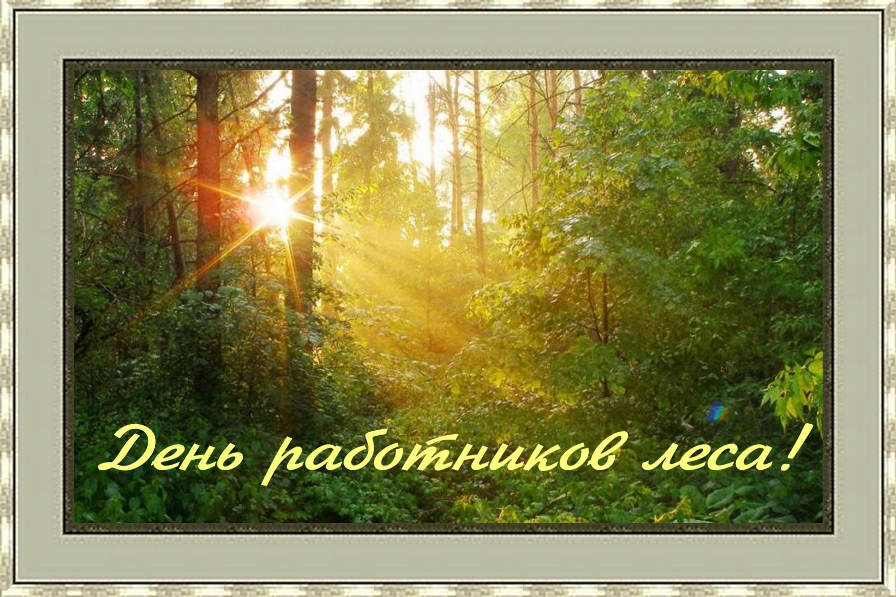 Поздравление к дню лесного