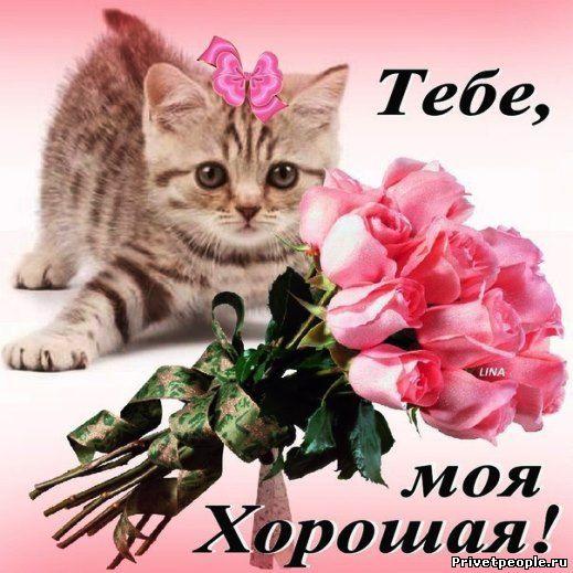 Поздравления с 1 апреля в прозе - Поздравок