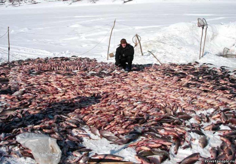 где ловить рыбу в запорожье